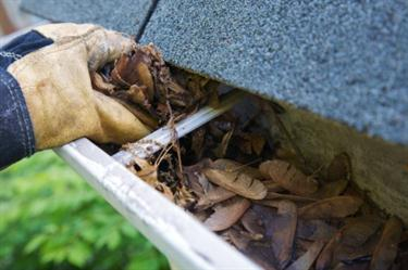 Cleaning gutter that is filled with leaves and other debris.