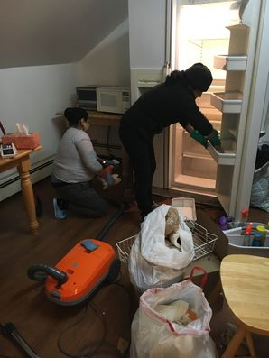 Deep Cleaning in Holmes, NY (1)